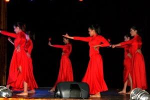danza_barinas